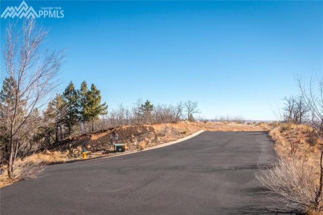 2681 Ryans Oak View, Colorado Springs, CO 80906 (#3646842) :: 8z Real Estate