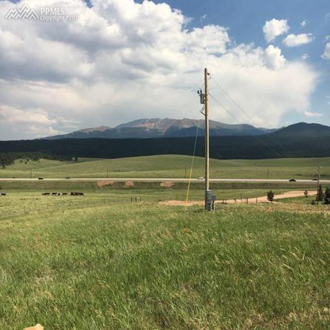 254 County 25 Road, Divide, CO 80814 (#3657619) :: 8z Real Estate