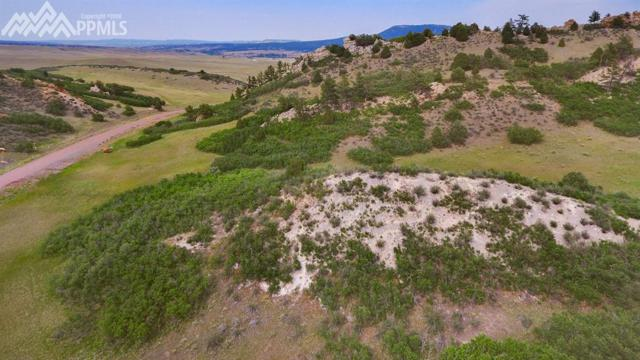 5855 Country Club Drive, Larkspur, CO 80118 (#3666469) :: The Treasure Davis Team
