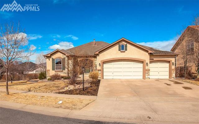4236 Apple Hill Court, Colorado Springs, CO 80920 (#3677790) :: RE/MAX Advantage