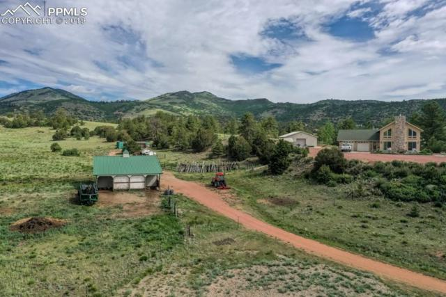 2235 Autumn Creek Drive, Canon City, CO 81212 (#3698481) :: Tommy Daly Home Team