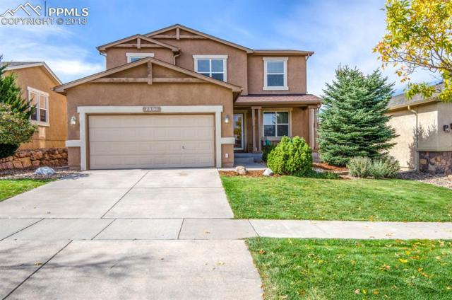 7994 Hunter Peak Trail, Colorado Springs, CO 80924 (#3740248) :: Venterra Real Estate LLC