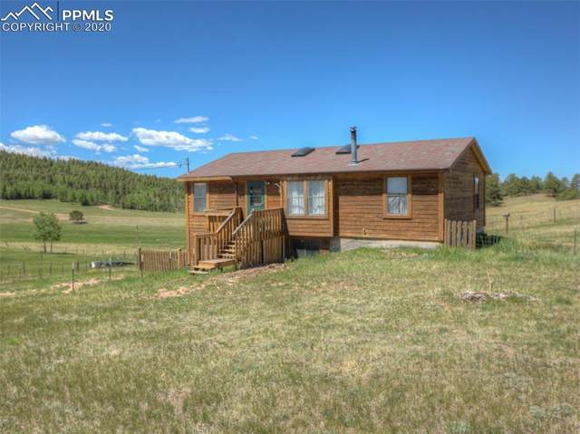 168 Shaw Lane, Divide, CO 80814 (#3745365) :: The Treasure Davis Team