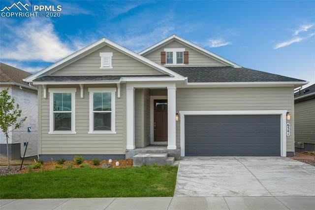 6541 Twin Falls Court, Colorado Springs, CO 80924 (#3752446) :: Finch & Gable Real Estate Co.