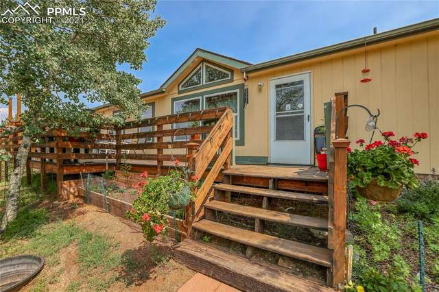 384 Columbine Road, Florissant, CO 80816 (#3775331) :: Tommy Daly Home Team