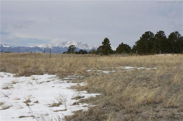 10615 Salbeck Lane, Colorado Springs, CO 80908 (#3797464) :: 8z Real Estate