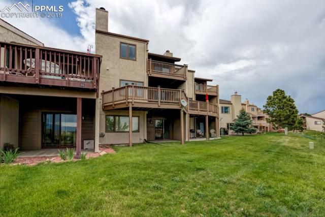 384 Mission Hill Way, Colorado Springs, CO 80921 (#3801343) :: Action Team Realty