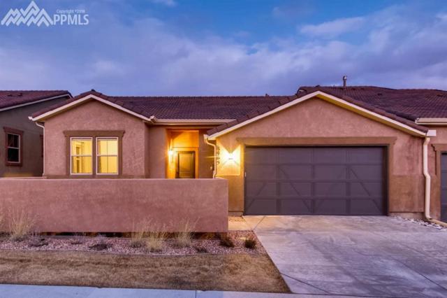 8465 Grand Peak Vista Point, Colorado Springs, CO 80920 (#3809175) :: 8z Real Estate
