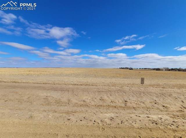 6555 Cowboy Ranch View, Peyton, CO 80831 (#3810889) :: Tommy Daly Home Team