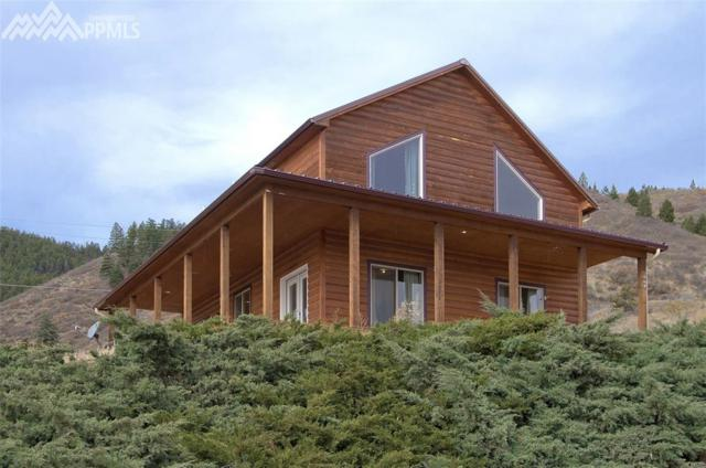 309 Brook Street, Palmer Lake, CO 80133 (#3827647) :: Colorado Home Finder Realty