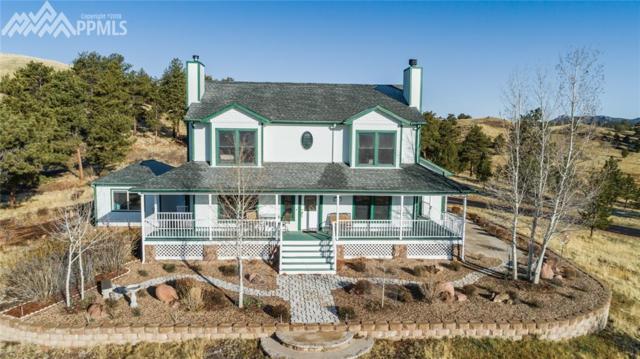 7003 County 71 Road, Guffey, CO 80820 (#3831112) :: 8z Real Estate