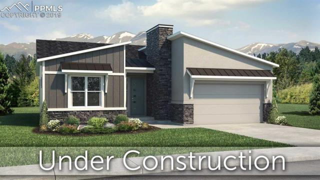 16338 Corkbark Terrace, Monument, CO 80132 (#3871618) :: Colorado Home Finder Realty