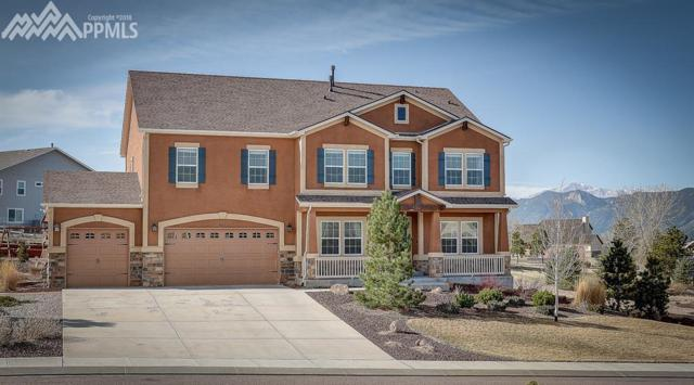 835 Woodmoor Acres Drive, Monument, CO 80132 (#3878729) :: Action Team Realty