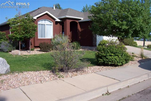 587 Crown Hill Mesa Drive, Colorado Springs, CO 80905 (#3929269) :: Action Team Realty