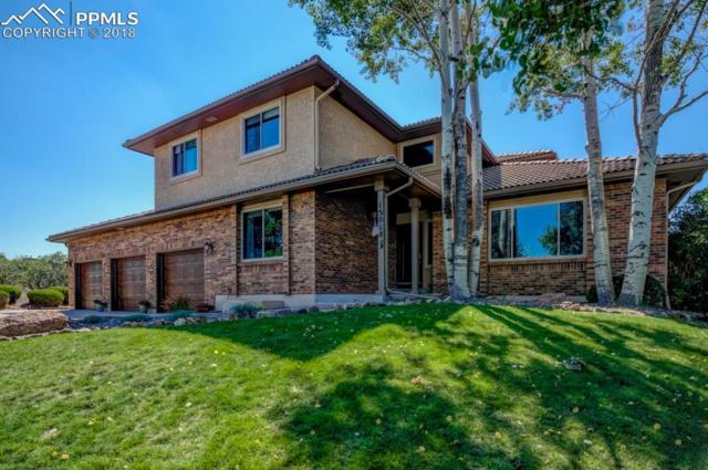15018 La Jolla Place, Colorado Springs, CO 80921 (#3972097) :: Fisk Team, RE/MAX Properties, Inc.