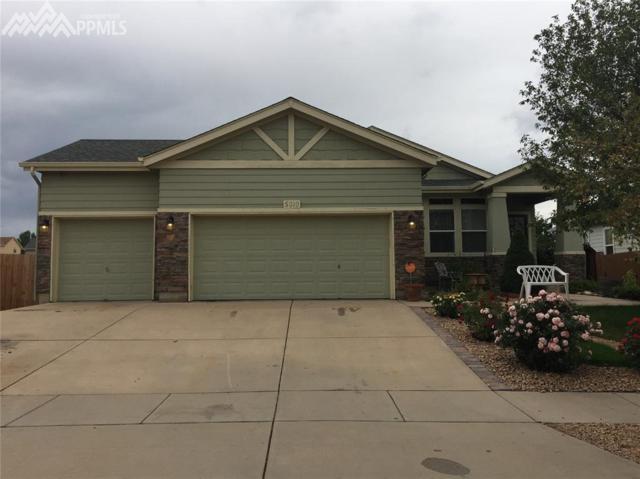 5010 Hawk Meadow Drive, Colorado Springs, CO 80916 (#3972482) :: 8z Real Estate