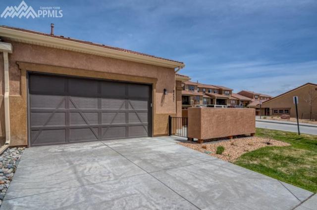 8457 Grand Peak Vista Point, Colorado Springs, CO 80920 (#3994690) :: 8z Real Estate