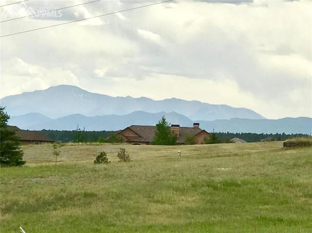 19628 Guildford Court, Monument, CO 80132 (#4000678) :: 8z Real Estate