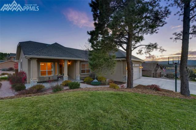 1517 Plowman Drive, Monument, CO 80132 (#4004901) :: Jason Daniels & Associates at RE/MAX Millennium