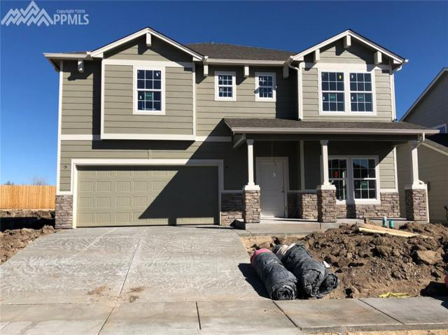 7418 Cat Tail Creek, Colorado Springs, CO 80923 (#4014235) :: Action Team Realty