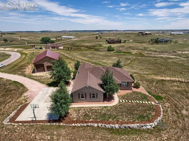 17875 Colt Court, Colorado Springs, CO 80908 (#4027042) :: Tommy Daly Home Team