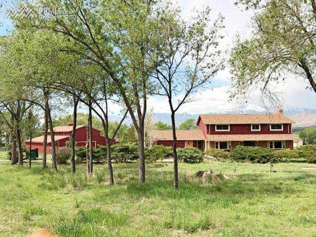 1663 Cragin Road, Colorado Springs, CO 80920 (#4043710) :: 8z Real Estate