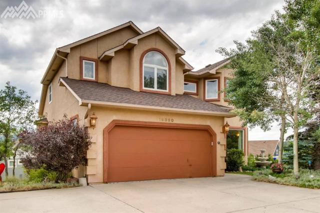 18360 Lower Lake Road, Monument, CO 80132 (#4049216) :: Action Team Realty