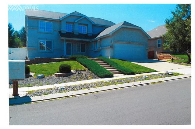 6633 Barrel Race Drive, Colorado Springs, CO 80923 (#4068215) :: 8z Real Estate