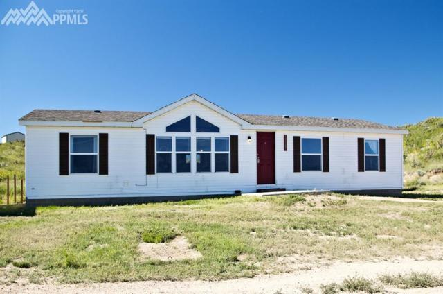 10165 Camino Grande Point, Fountain, CO 80817 (#4075050) :: 8z Real Estate
