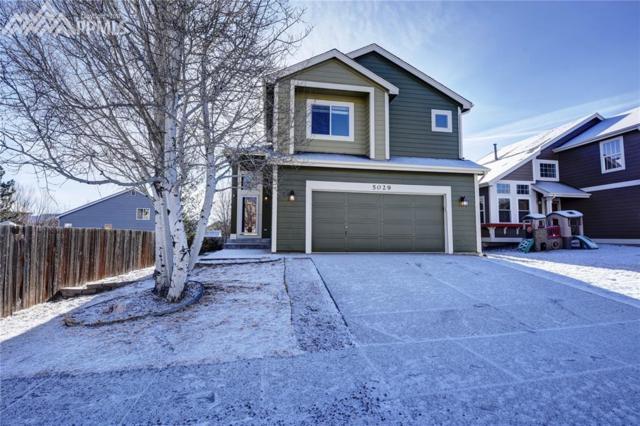 5029 Bittercreek Drive, Colorado Springs, CO 80922 (#4076651) :: 8z Real Estate