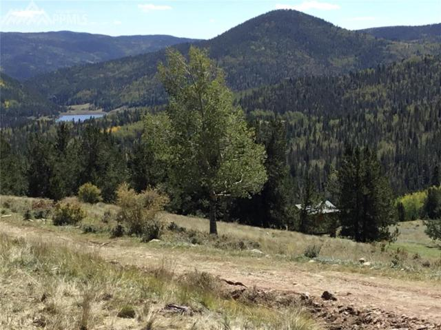5123 County 8 Road, Victor, CO 80863 (#4087497) :: 8z Real Estate