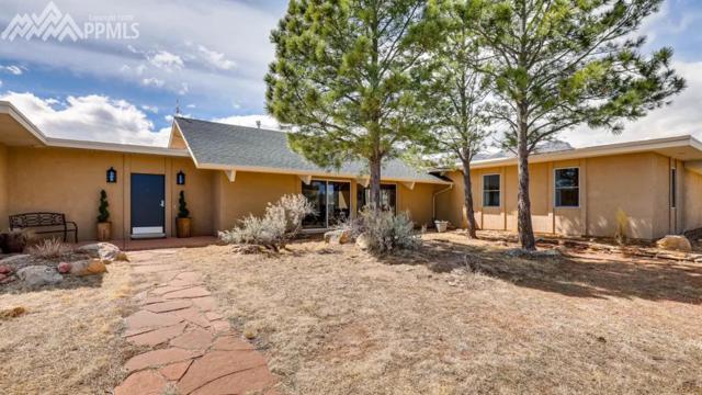 8320 Westwood Road, Colorado Springs, CO 80919 (#4088584) :: The Peak Properties Group