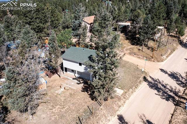 667 Blossom Road, Woodland Park, CO 80863 (#4110666) :: Tommy Daly Home Team