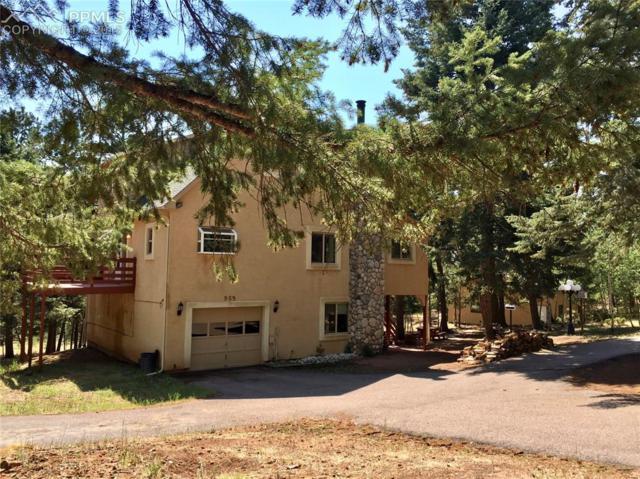 909 S West Street, Woodland Park, CO 80863 (#4114421) :: 8z Real Estate
