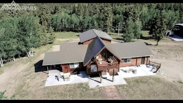 10257 W Highway 24 Highway, Divide, CO 80814 (#4148556) :: Action Team Realty