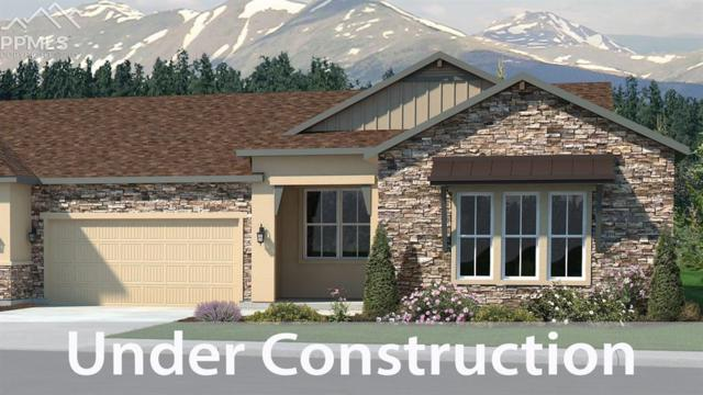 1636 Lazy Cat Lane, Monument, CO 80132 (#4156352) :: The Hunstiger Team