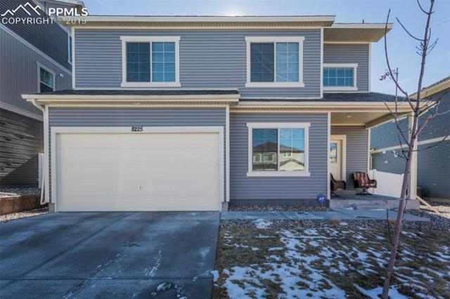 8225 Campground Drive, Fountain, CO 80817 (#4198533) :: 8z Real Estate