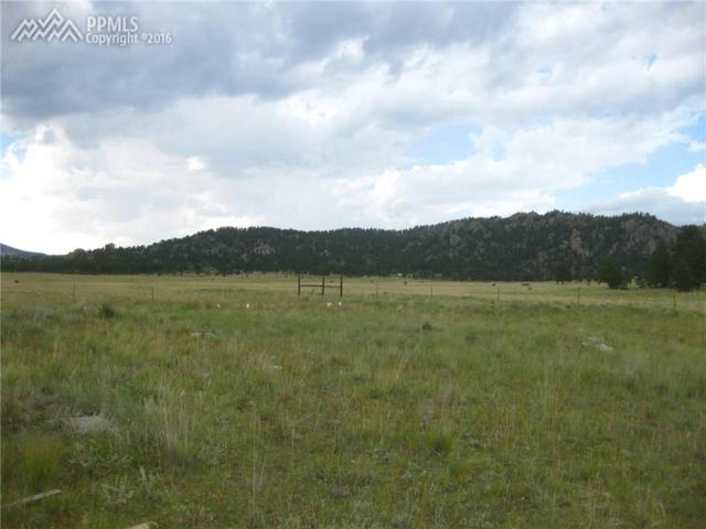 2470 Doe Valley Road, Guffey, CO 80820 (#4204044) :: The Treasure Davis Team