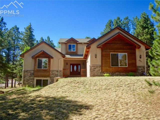 251 Eagle Pines Drive, Woodland Park, CO 80863 (#4219268) :: The Peak Properties Group