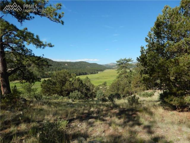 1002 County 111 Road, Florissant, CO 80816 (#4224802) :: 8z Real Estate