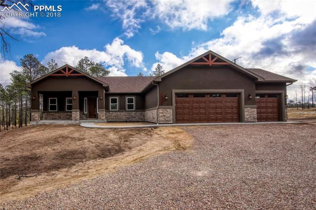 14973 Snowy Pine Point, Colorado Springs, CO 80908 (#4226171) :: The Treasure Davis Team
