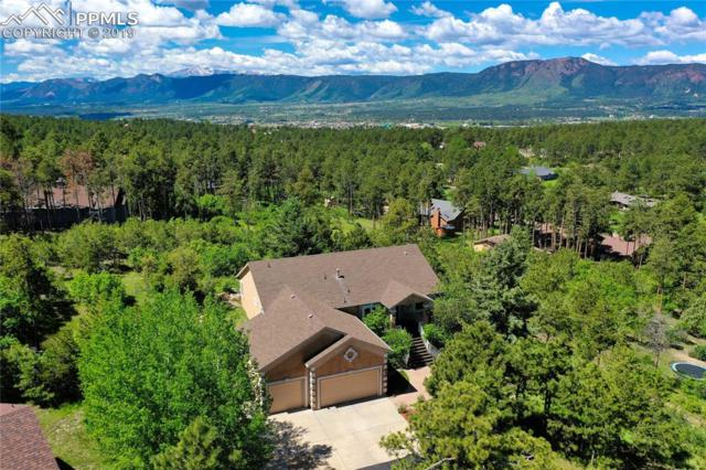 1065 Woodmoor Drive, Monument, CO 80132 (#4235684) :: Tommy Daly Home Team