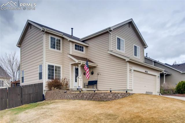 4636 Saddle Ridge Drive, Colorado Springs, CO 80922 (#4251500) :: The Treasure Davis Team