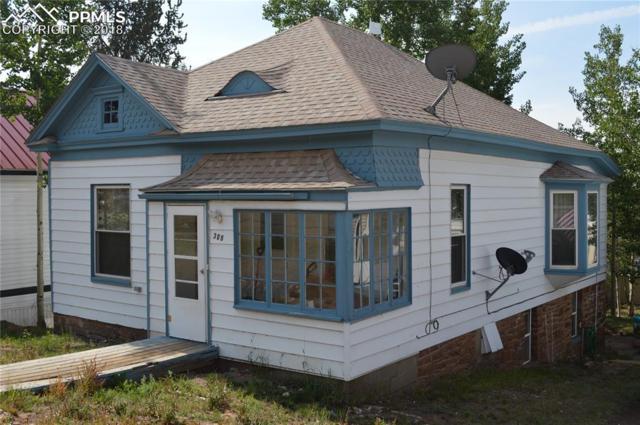 308 E Eaton Avenue, Cripple Creek, CO 80813 (#4258182) :: Jason Daniels & Associates at RE/MAX Millennium