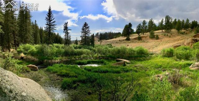 1818 Arapahoe Creek Trail, Florissant, CO 80816 (#4293493) :: The Hunstiger Team