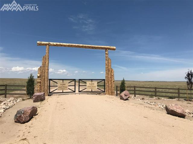 Judge Orr Road, Falcon, CO 80831 (#4314521) :: Fisk Team, RE/MAX Properties, Inc.
