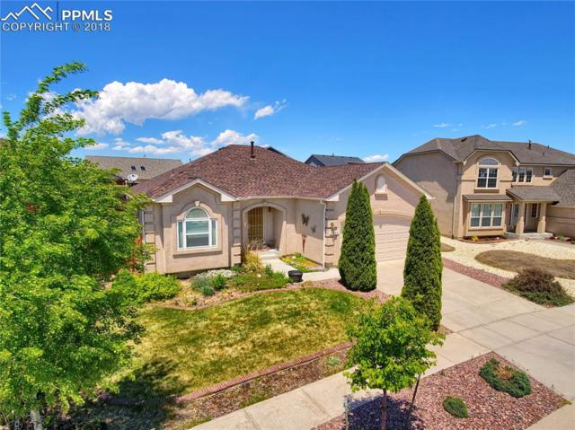 7268 Amberly Drive, Colorado Springs, CO 80923 (#4324069) :: CENTURY 21 Curbow Realty