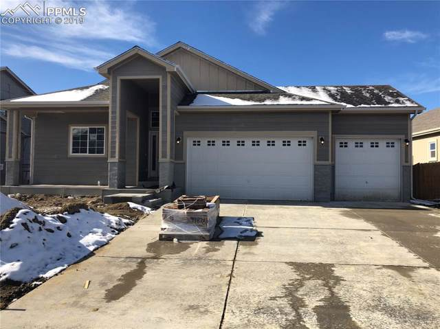 7268 Bigtooth Maple Drive, Colorado Springs, CO 80925 (#4326989) :: Fisk Team, RE/MAX Properties, Inc.