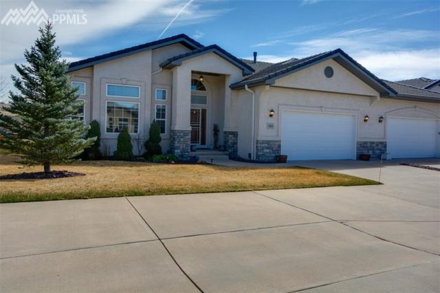14341 Eagle Villa Grove, Colorado Springs, CO 80921 (#4344322) :: The Treasure Davis Team