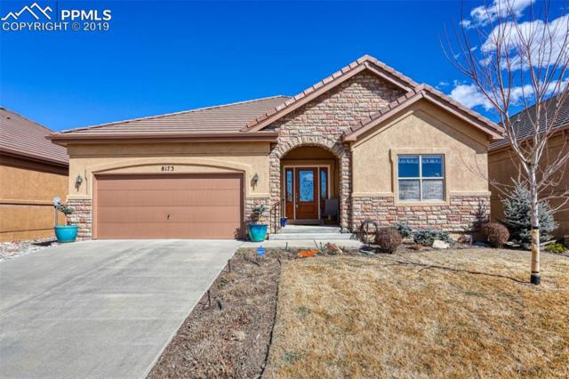 8173 Regiment Court, Colorado Springs, CO 80920 (#4363573) :: Action Team Realty